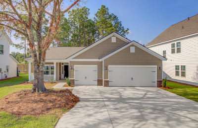 Summerville Single Family Home For Sale: 1119 Sapling Drive