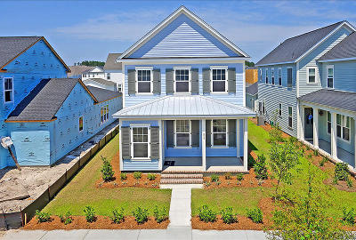 Summerville Single Family Home For Sale: 337 Watergrass Street