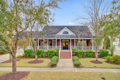 Charleston Single Family Home For Sale: 254 Beresford Creek Street