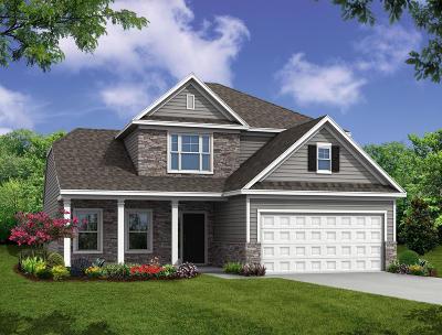 Moncks Corner Single Family Home For Sale: 431 Brookgreen Drive