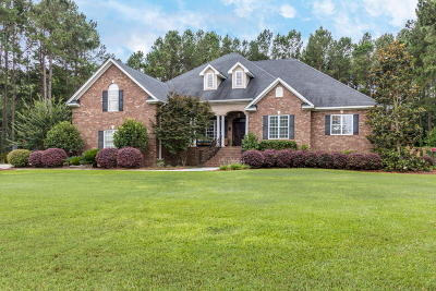 Single Family Home For Sale: 289 Suwanee Drive