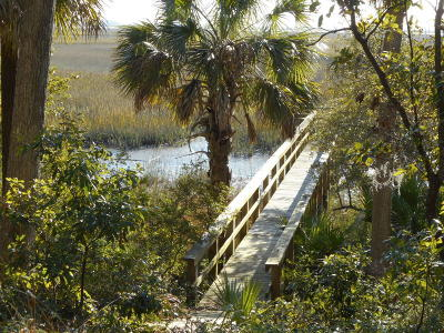 Edisto Island SC Residential Lots & Land For Sale: $325,000