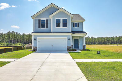 Summerville Single Family Home For Sale: 237 Bering Lane