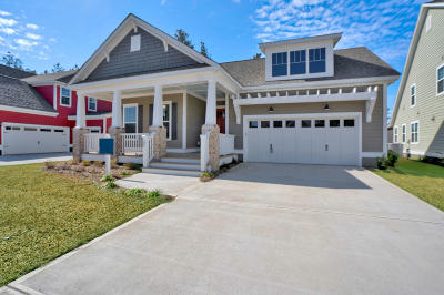Summerville Single Family Home For Sale: 195 Calm Water Way