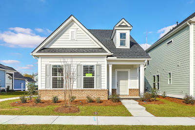 Charleston Single Family Home For Sale: 300 Spring Hollow Drive