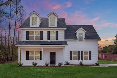 Charleston County Single Family Home For Sale: 831 Jordan Street