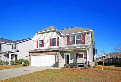 Moncks Corner Single Family Home For Sale: 334 Drayton Place Drive