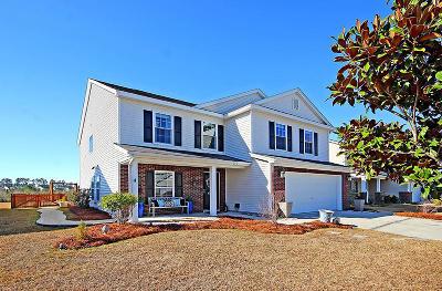 Summerville Single Family Home For Sale: 153 Decatur Drive