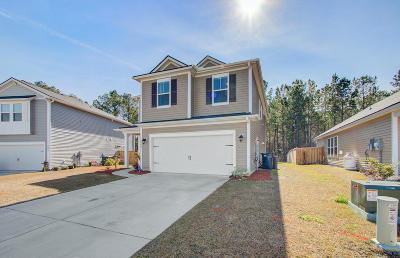 Berkeley County, Charleston County, Dorchester County Single Family Home For Sale: 1394 Wild Goose Trail