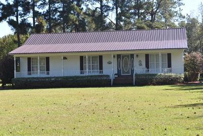 Berkeley County, Charleston County, Dorchester County Single Family Home For Sale: 300 Radio Road