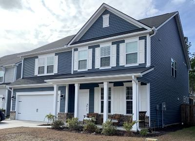 Summerville Single Family Home For Sale: 196 Basket Grass Lane