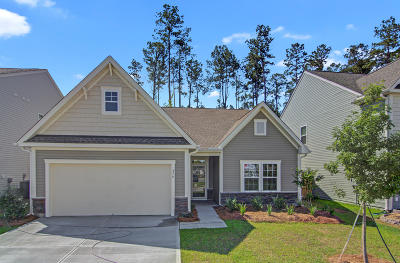 Summerville Single Family Home For Sale: 279 Dunlin Drive #174
