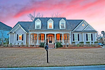 Mount Pleasant Single Family Home For Sale: 3090 Yachtsman Drive