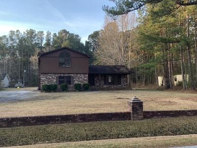 Berkeley County, Charleston County, Dorchester County Single Family Home For Sale: 1043 Leslie Street