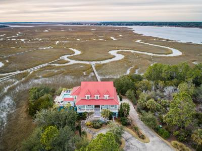 Berkeley County, Charleston County, Colleton County, Dorchester County Single Family Home For Sale: 2719 Jenkins Point Road