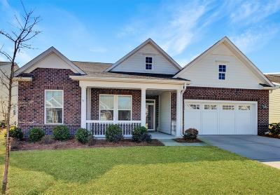 Summerville Single Family Home For Sale: 3019 Cross Vine Lane