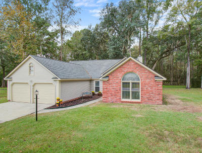 Summerville Single Family Home For Sale: 102 Afton Court