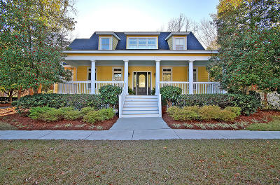 Berkeley County Single Family Home For Sale: 189 Corn Planters Street