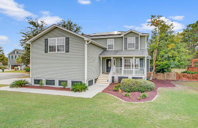 Charleston Single Family Home For Sale: 1063 Clearspring Drive