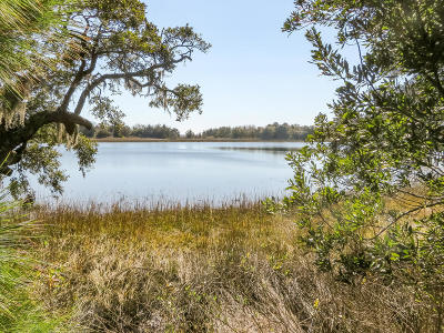 Awendaw Residential Lots & Land For Sale: 611 Awendaw Lakes Boulevard