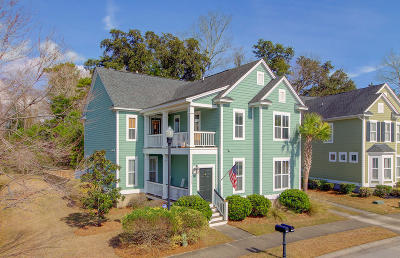 Charleston Single Family Home For Sale: 3024 Coopers Basin Circle