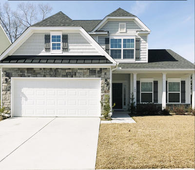 Berkeley County Single Family Home For Sale: 109 Marinella Drive
