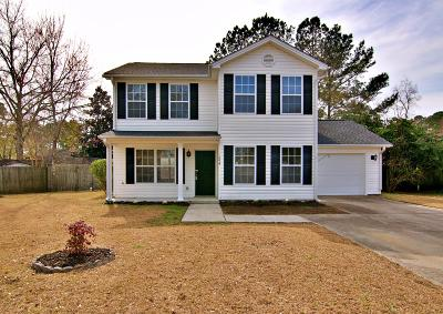 Berkeley County, Charleston County, Dorchester County Single Family Home For Sale: 3294 Rachael Circle