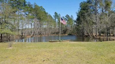 Walterboro Single Family Home For Sale: 3525 Can City Road