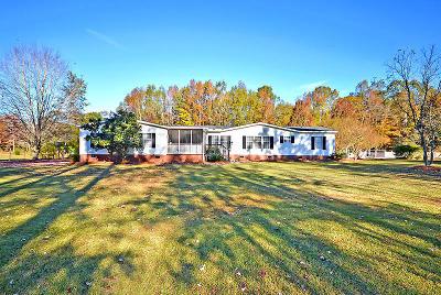 Berkeley County Single Family Home For Sale: 217 Ilas Grove Lane