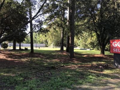Johns Island Residential Lots & Land For Sale: 3289 Maybank Highway