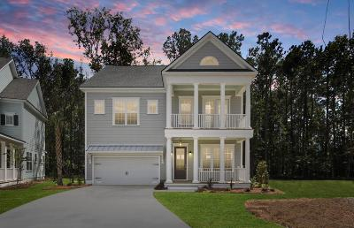 Mount Pleasant Single Family Home For Sale: 1056 Lyle Way