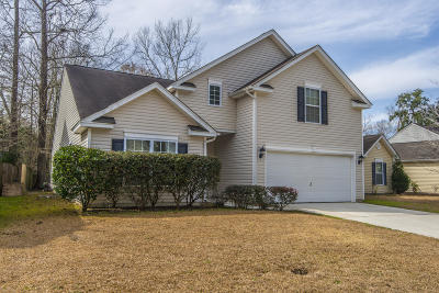 Berkeley County, Charleston County, Dorchester County Single Family Home For Sale: 125 Moon Shadow Lane