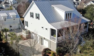 Berkeley County Single Family Home For Sale: 1389 Smythe Street