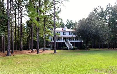 Summerville Single Family Home For Sale: 472 Cypress Point Drive
