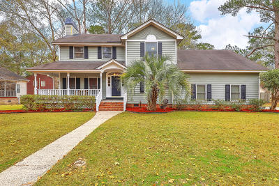 Berkeley County, Charleston County, Dorchester County Single Family Home For Sale: 307 McDougal Circle