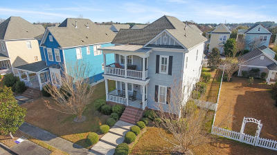 Summerville Single Family Home For Sale: 313 Hydrangea Street
