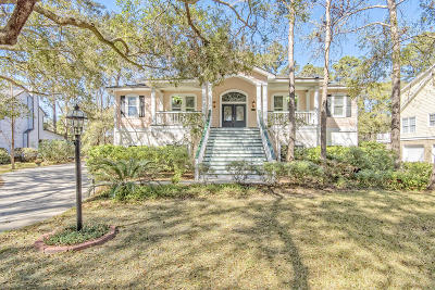 Berkeley County, Charleston County, Colleton County, Dorchester County Single Family Home For Sale: 5208 Holly Forest Drive