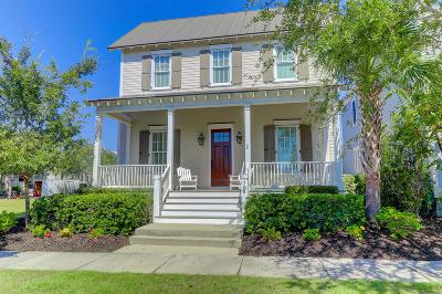 Mount Pleasant Single Family Home For Sale: 1708 Paradise Lake Drive