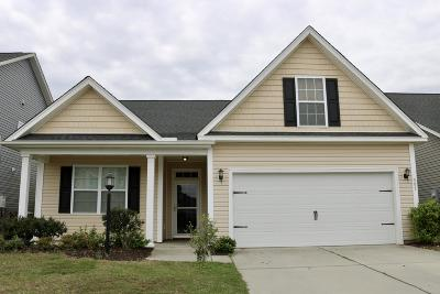 Berkeley County, Charleston County, Dorchester County Single Family Home For Sale: 551 Crossland Drive