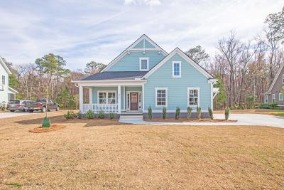 Summerville Single Family Home For Sale: 272 Silver Cypress Circle