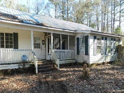 Berkeley County, Charleston County, Dorchester County Single Family Home For Sale: 150 Kitchens Drive