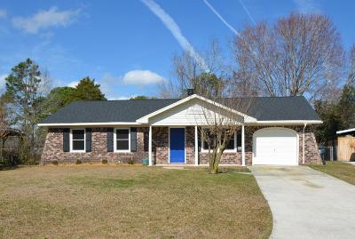 Berkeley County, Charleston County, Dorchester County Single Family Home For Sale: 326 Village Green Circle