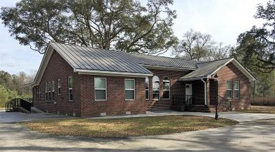 Walterboro Single Family Home For Sale: 784 N Jefferies Boulevard