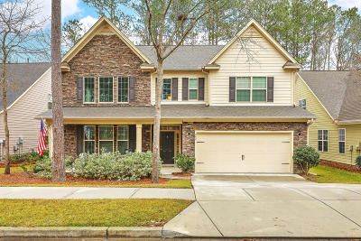 Summerville Single Family Home For Sale: 242 Comiskey Park Circle Circle