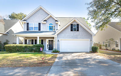 Charleston Single Family Home For Sale: 3012 Allison Cove Drive