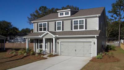 Johns Island Single Family Home For Sale: 1279 Hammrick Lane