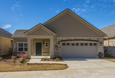 Summerville Single Family Home For Sale: 403 Claymoor Village Lane