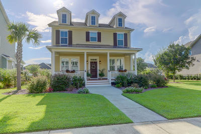 Charleston County Single Family Home For Sale: 4282 Misty Hollow Lane