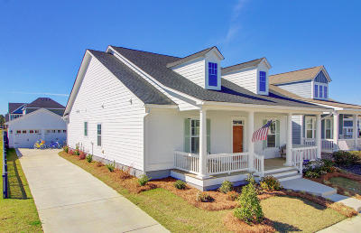 Summerville Single Family Home For Sale: 521 Wodin Place