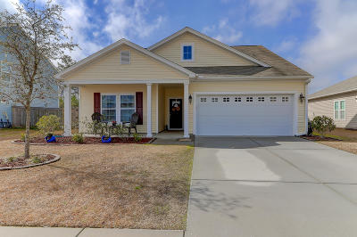 Goose Creek Single Family Home For Sale: 531 Nandina Drive